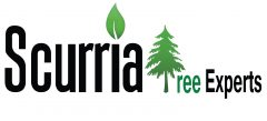 Scurria Tree Experts Company